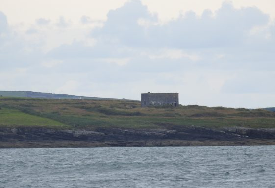 Kilcredaun Quadrangular Tower and Battery