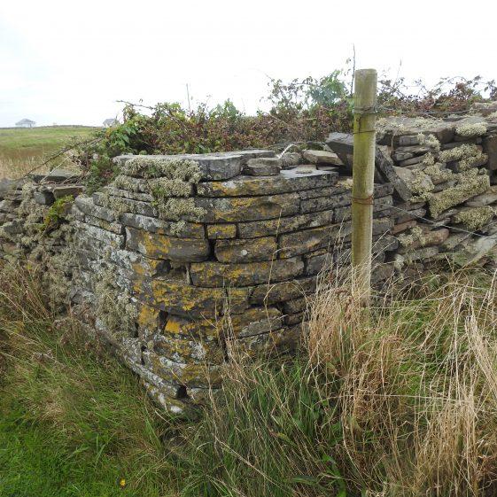 Stones of Kilkee Castle | Robert Brown