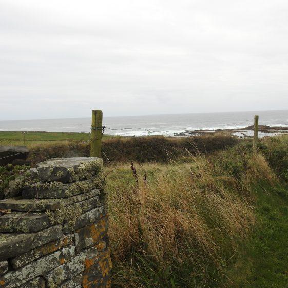 Site of Kilkee Castle | Robert Brown